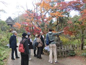 散歩イベントの写真